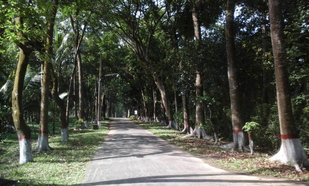 Bangladesh Rural Development Academy (BARD)
